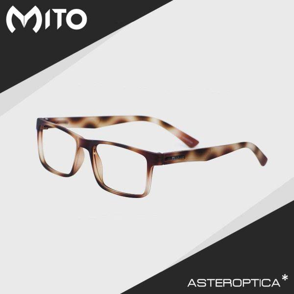 mito-tr05web1